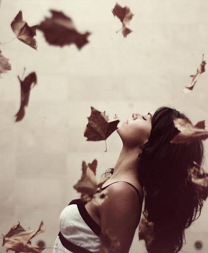 vento e foglie